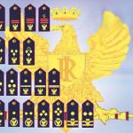 gradi-polizia-completi